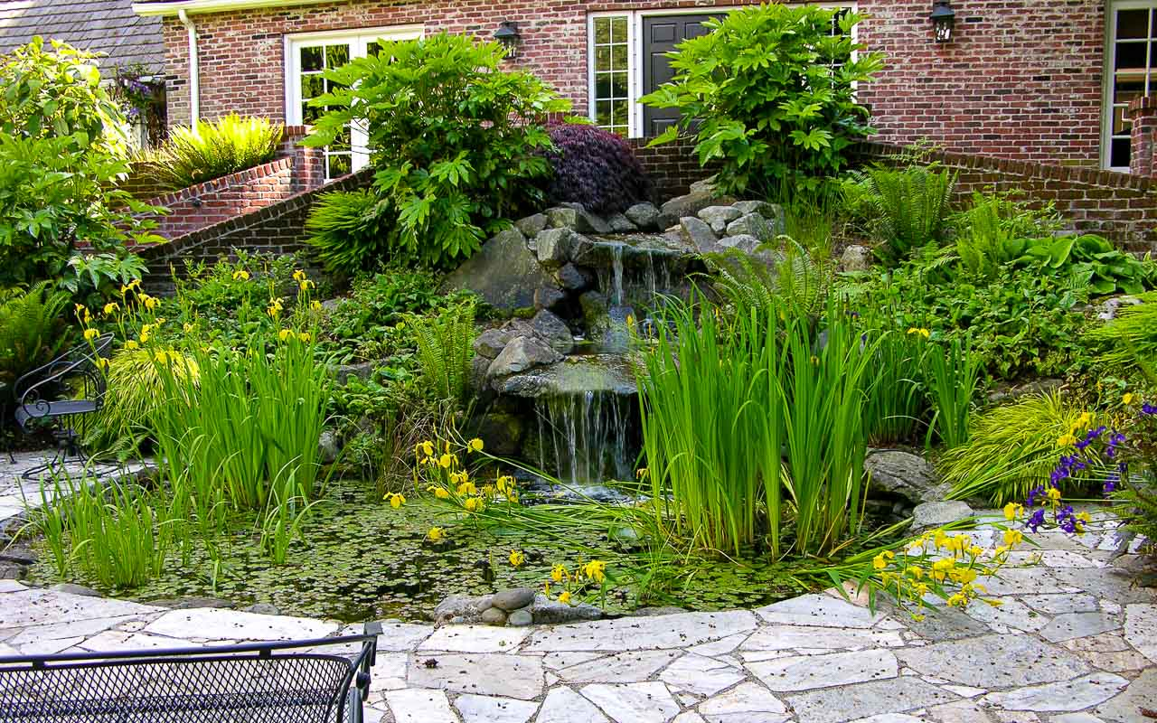 Water Features 1